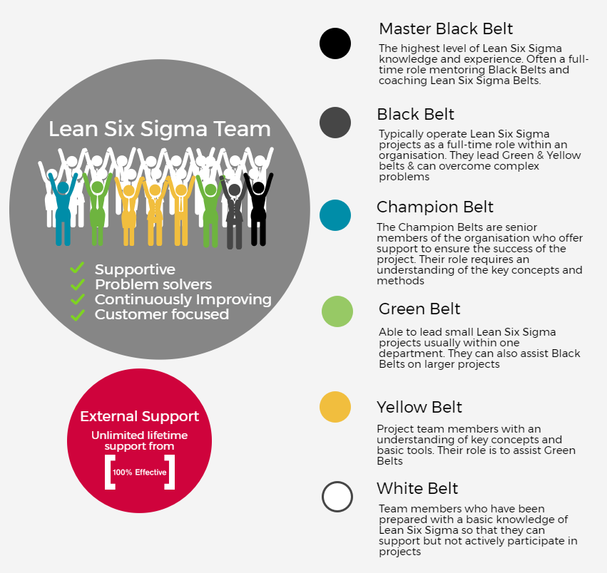 Lean Six Sigma team.