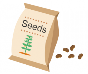 Blog-seeds-for-future