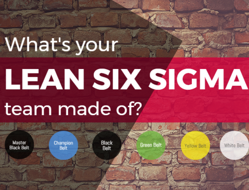 What's your Lean Six Sigma team made of? [INFOGRAPHIC]