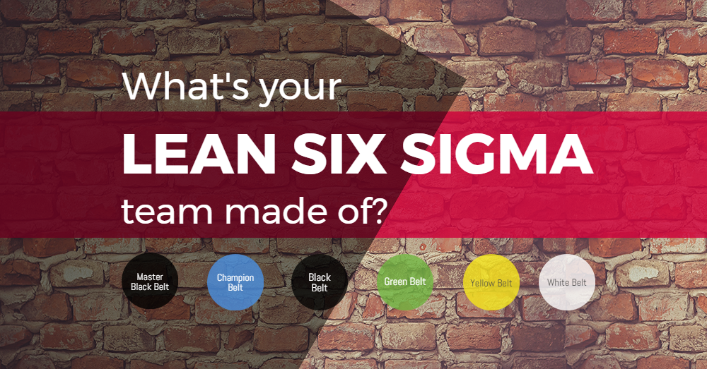 What;s your Lean Six Sigma team made of?