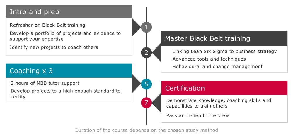 Master Black Belt course structure