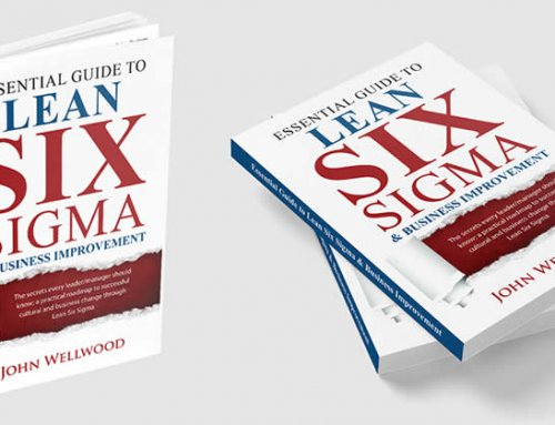 The Essential Guide to Lean Six Sigma & Business Improvement; the journey
