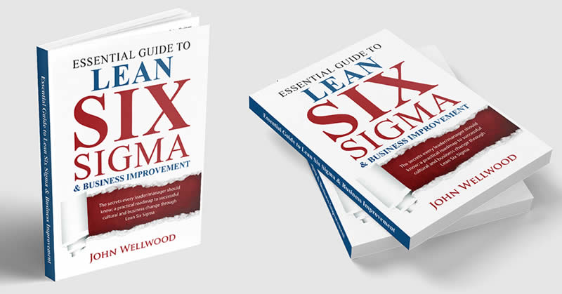 The Essential Guide to Lean Six Sigma & Business Improvement Book
