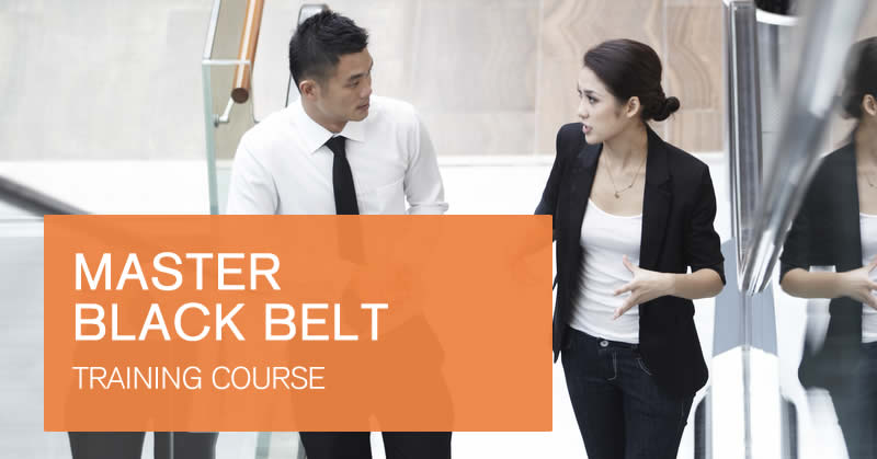 Master Black Belt training course