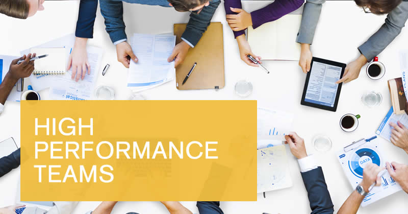 Online building high performance teams course